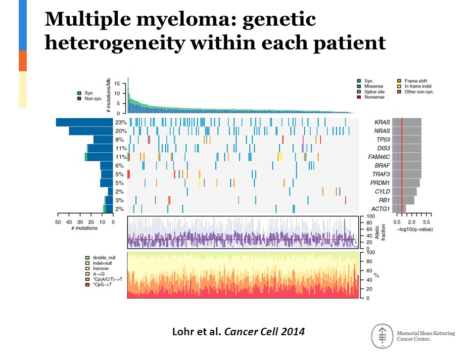 Multiple myeloma: genetic heterogeneity within each patient