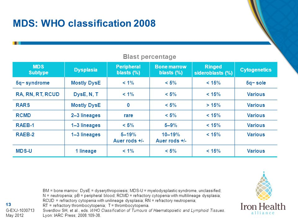 MDS: WHO classification 2008
