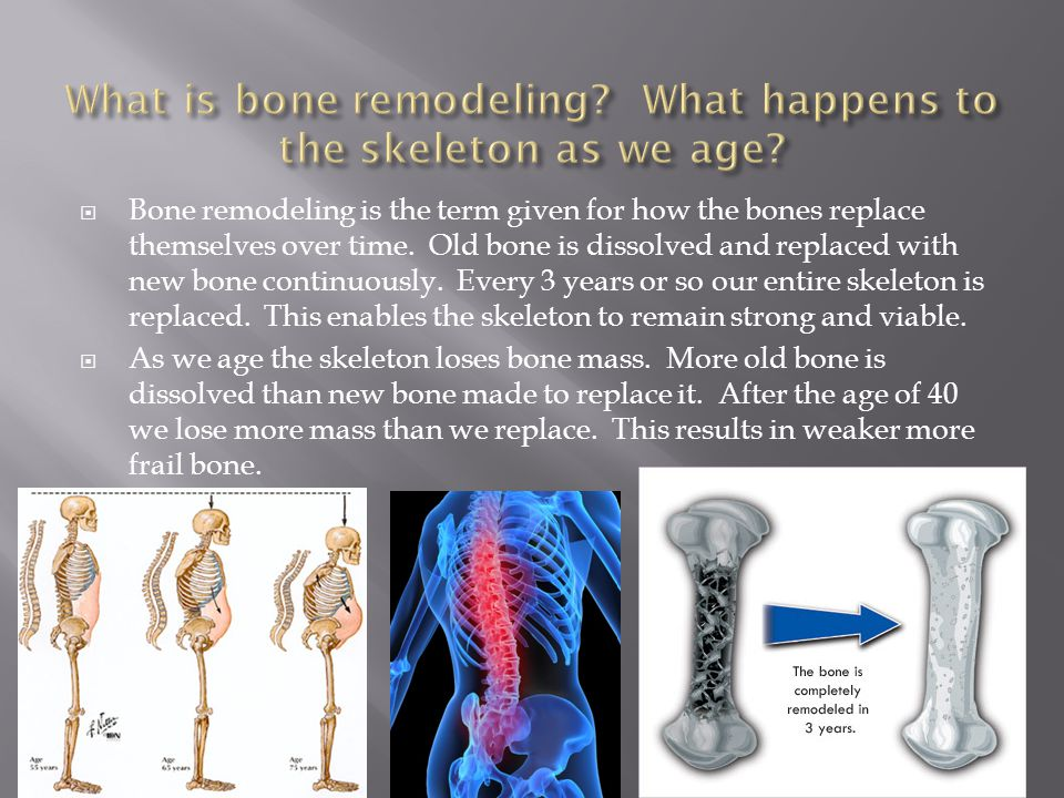What is bone remodeling What happens to the skeleton as we age