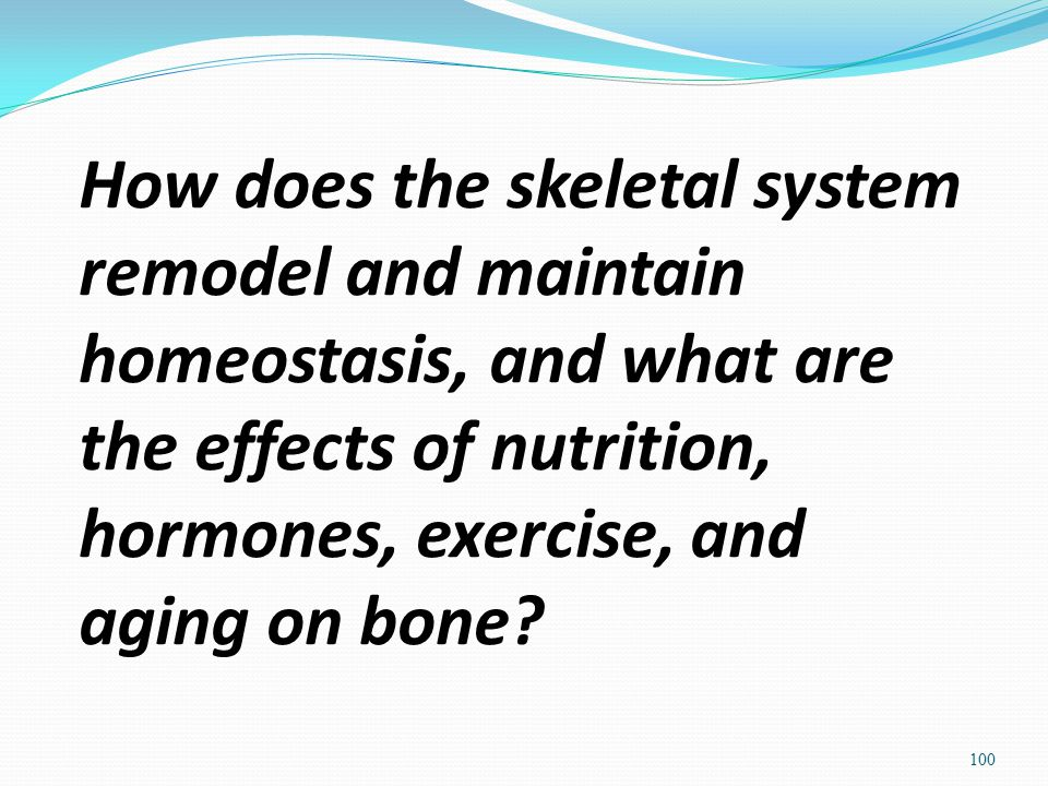 How does the skeletal system remodel and maintain homeostasis, and what are the effects of nutrition, hormones, exercise, and aging on bone