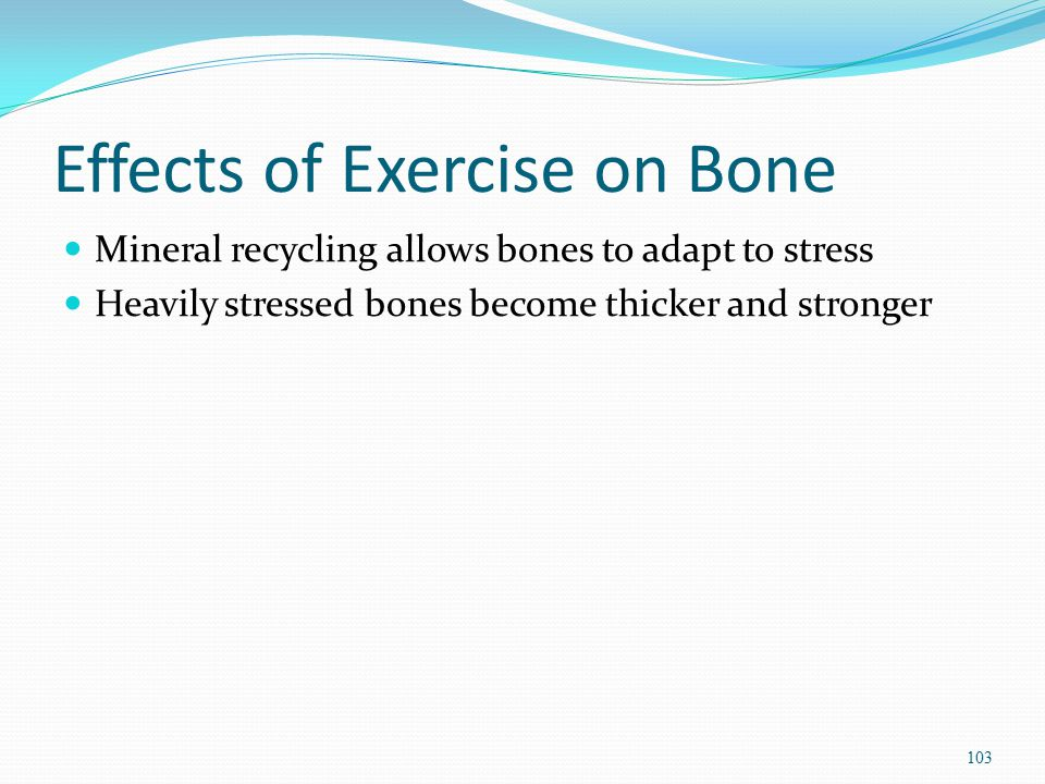 Effects of Exercise on Bone