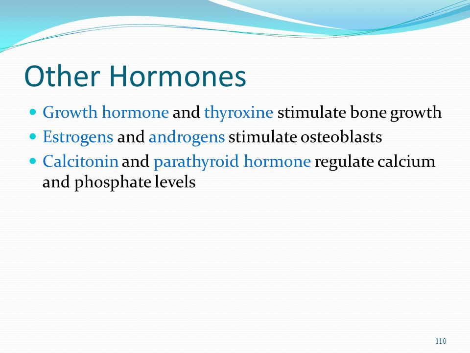 Other Hormones Growth hormone and thyroxine stimulate bone growth