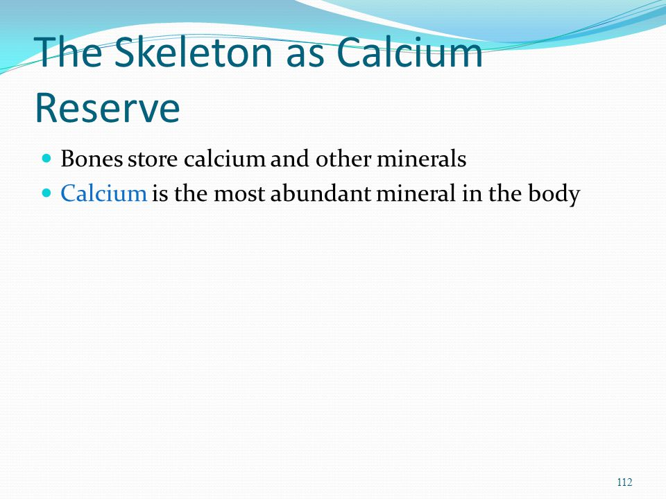 The Skeleton as Calcium Reserve