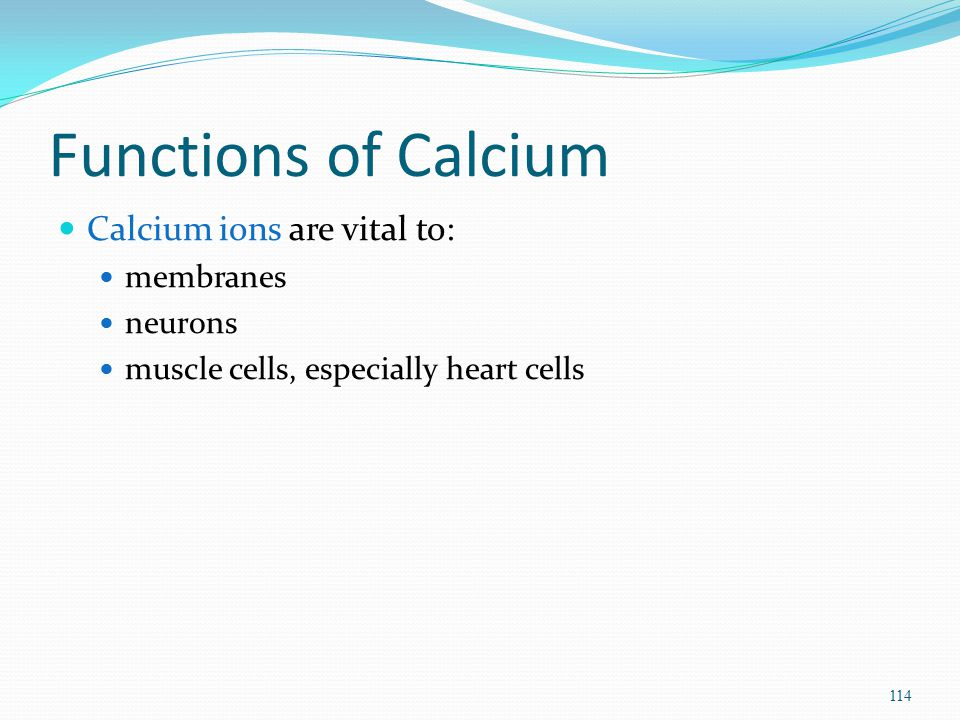 Functions of Calcium Calcium ions are vital to: membranes neurons