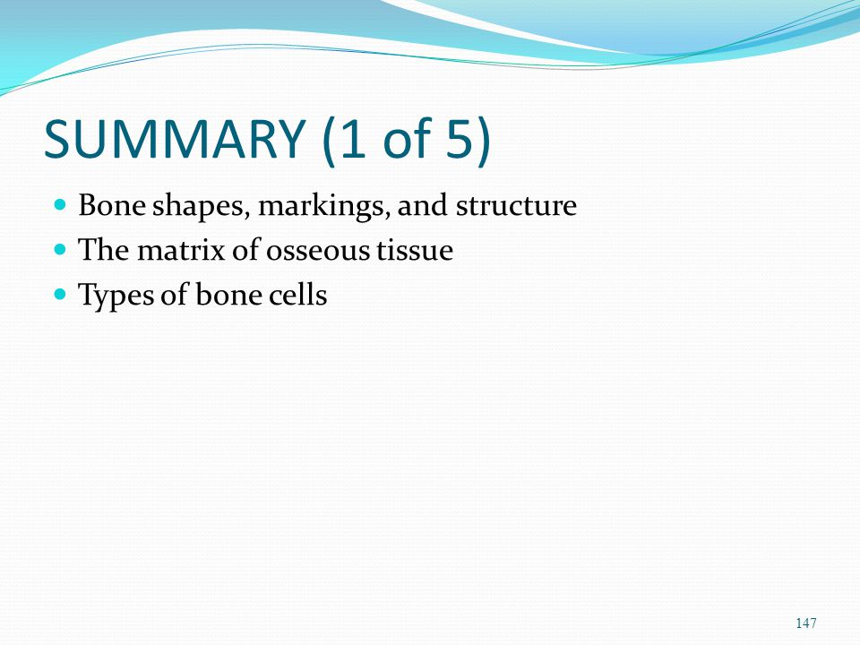 SUMMARY (1 of 5) Bone shapes, markings, and structure