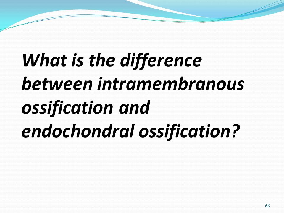 What is the difference between intramembranous ossification and endochondral ossification