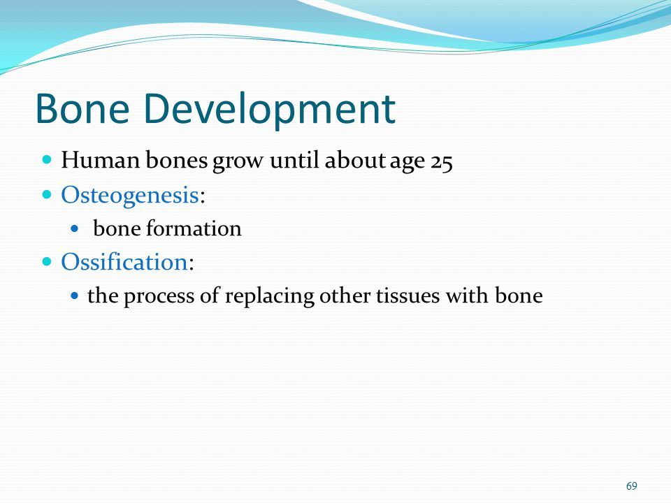 Bone Development Human bones grow until about age 25 Osteogenesis: