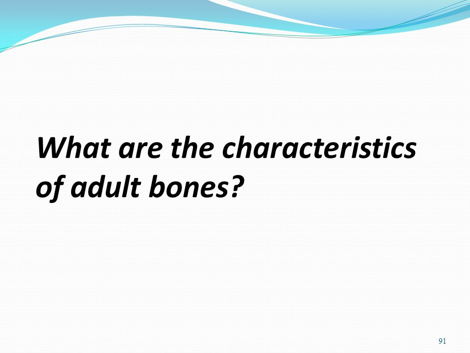 What are the characteristics of adult bones