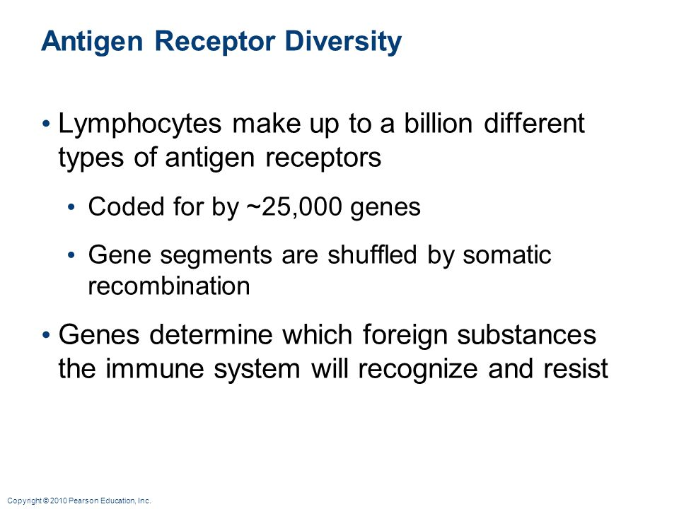 Antigen Receptor Diversity