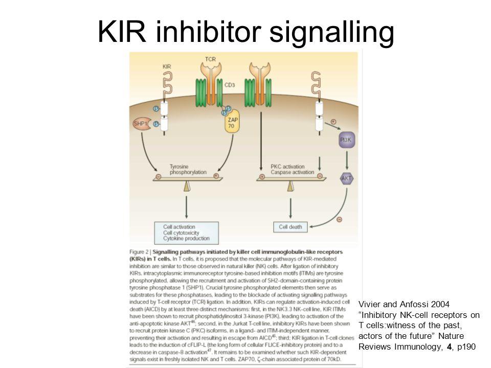 KIR inhibitor signalling