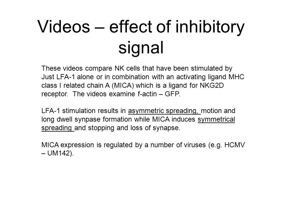 Videos – effect of inhibitory signal