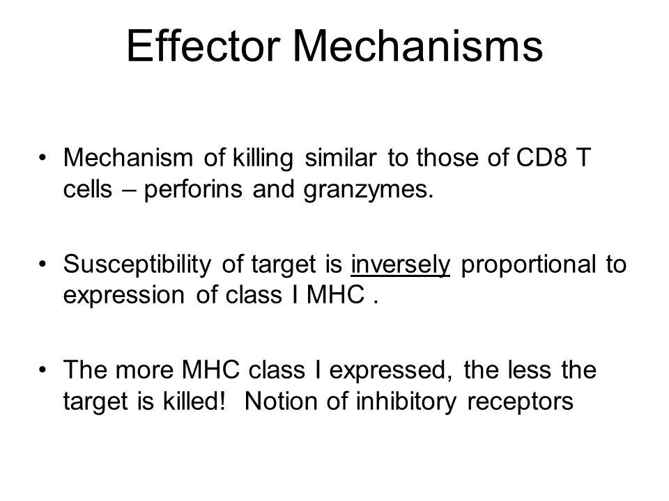 Effector Mechanisms Mechanism of killing similar to those of CD8 T cells – perforins and granzymes.