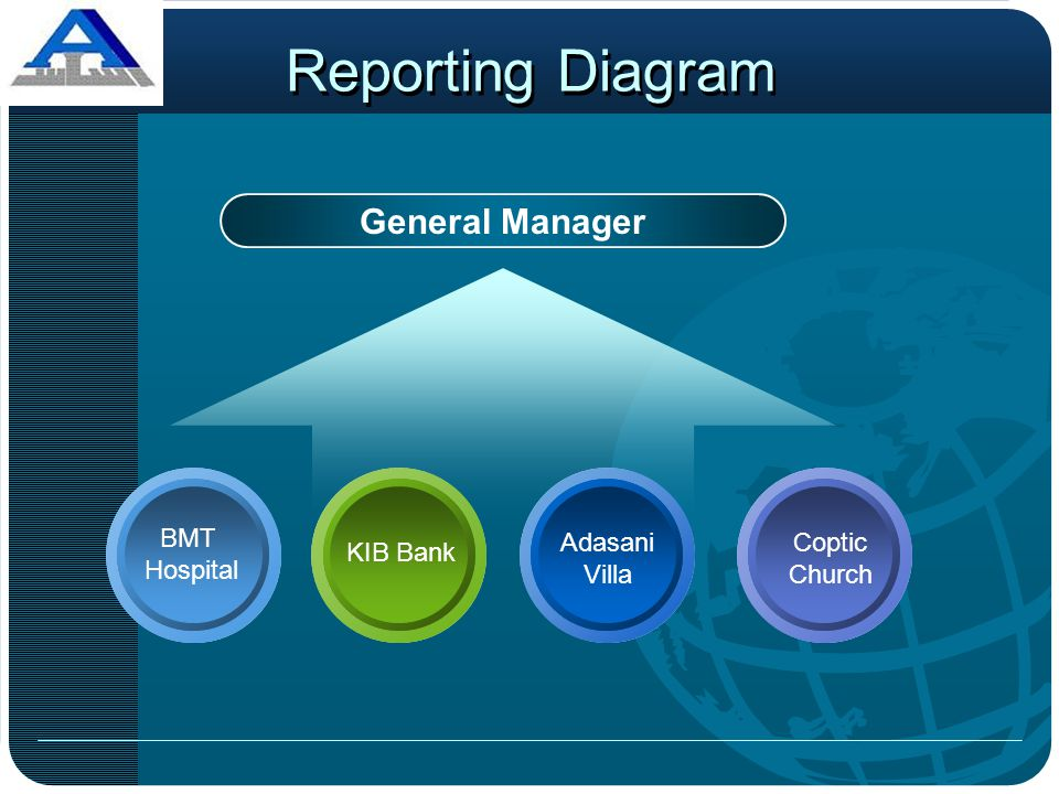 Reporting Diagram General Manager BMT Hospital Adasani Villa Coptic