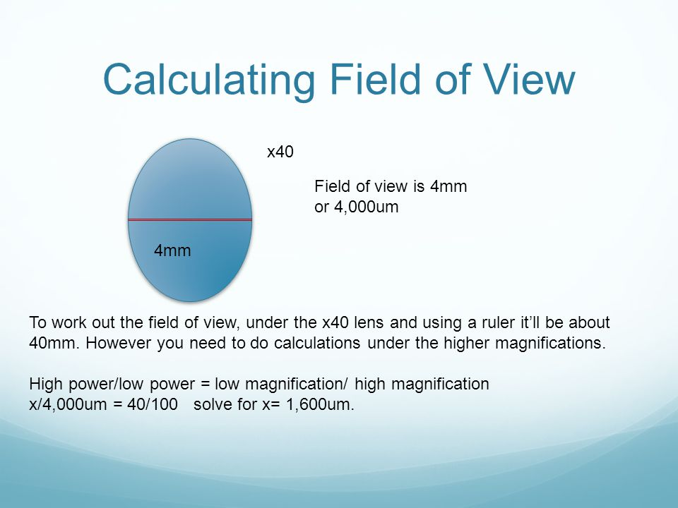 Calculating Field of View