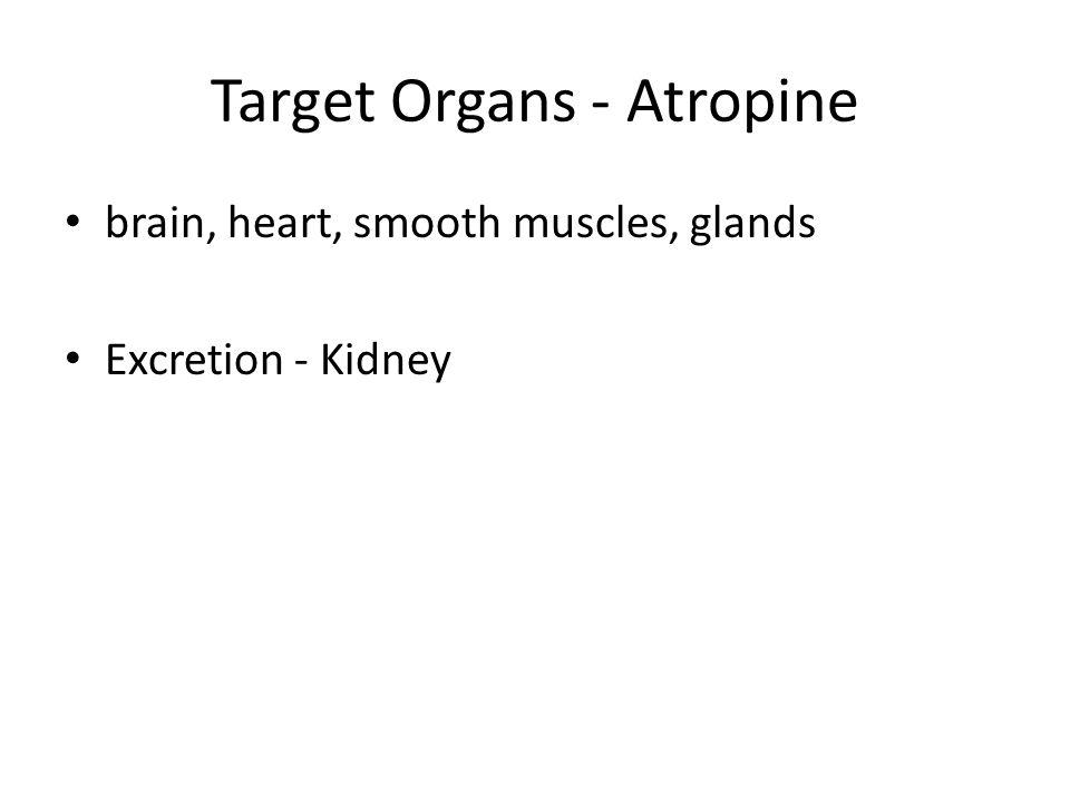 Target Organs - Atropine