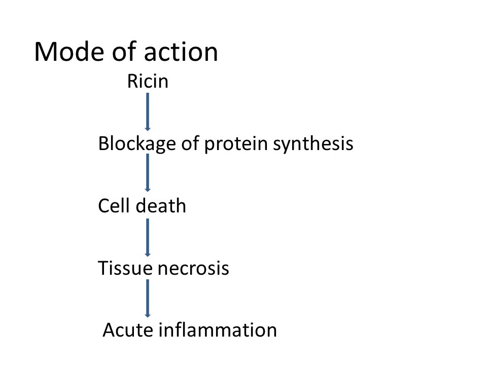 Mode of action Ricin Blockage of protein synthesis Cell death