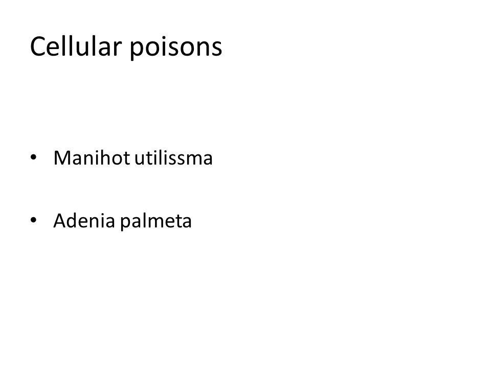 Cellular poisons Manihot utilissma Adenia palmeta
