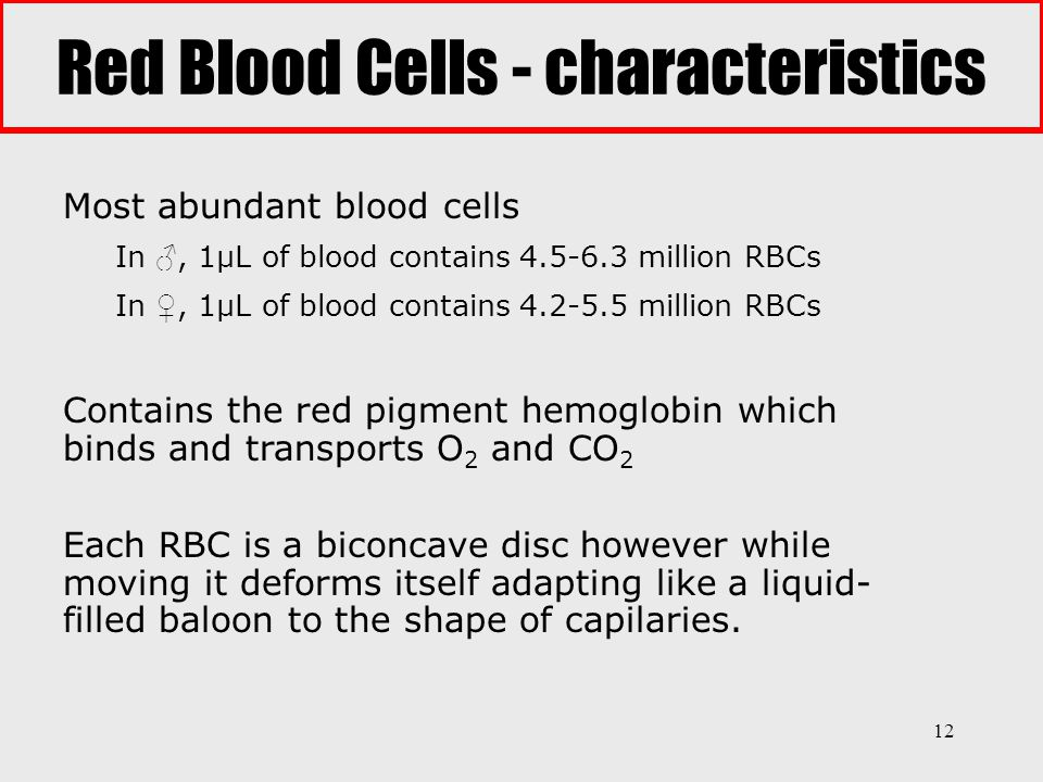 Red Blood Cells - characteristics