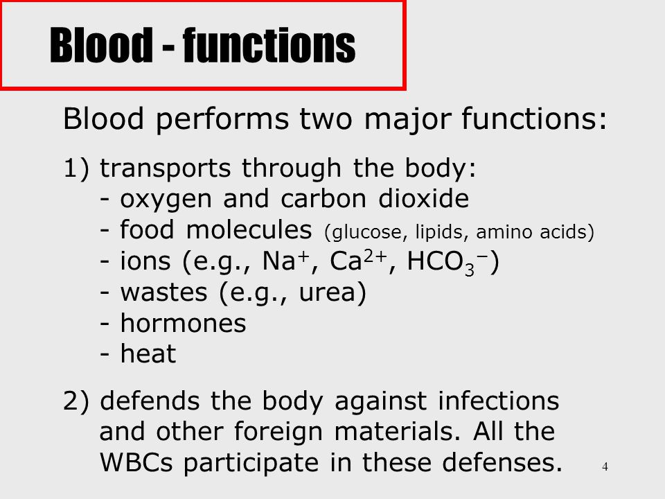 Blood - functions