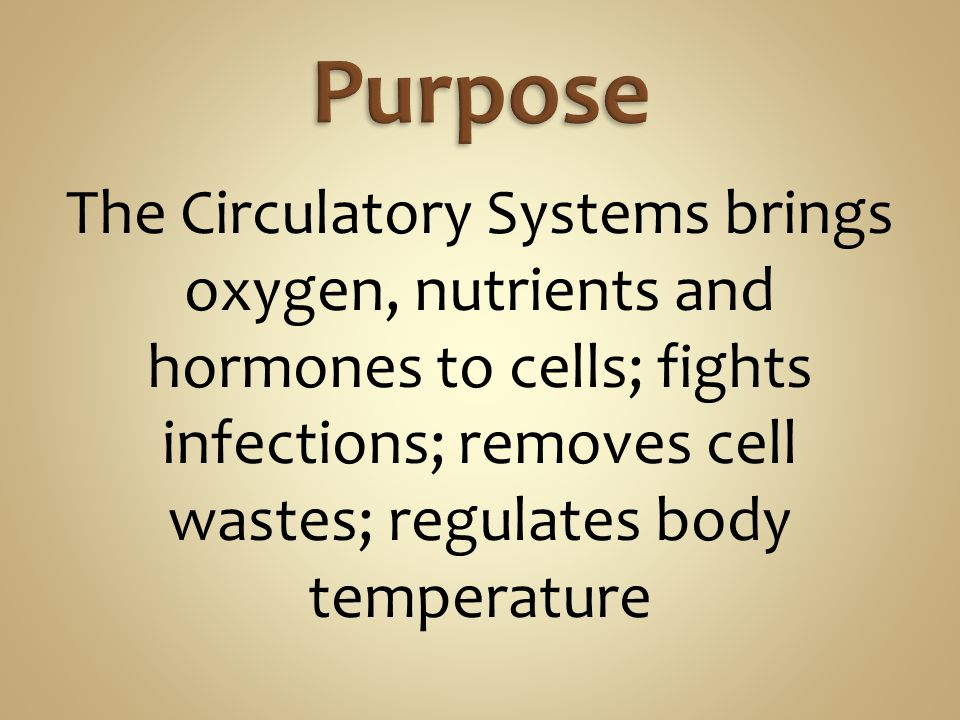 Purpose The Circulatory Systems brings oxygen, nutrients and hormones to cells; fights infections; removes cell wastes; regulates body temperature.