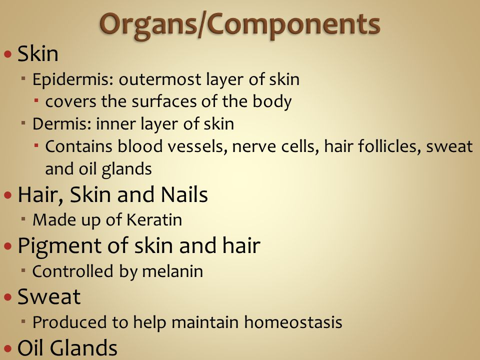 Organs/Components Skin Hair, Skin and Nails Pigment of skin and hair