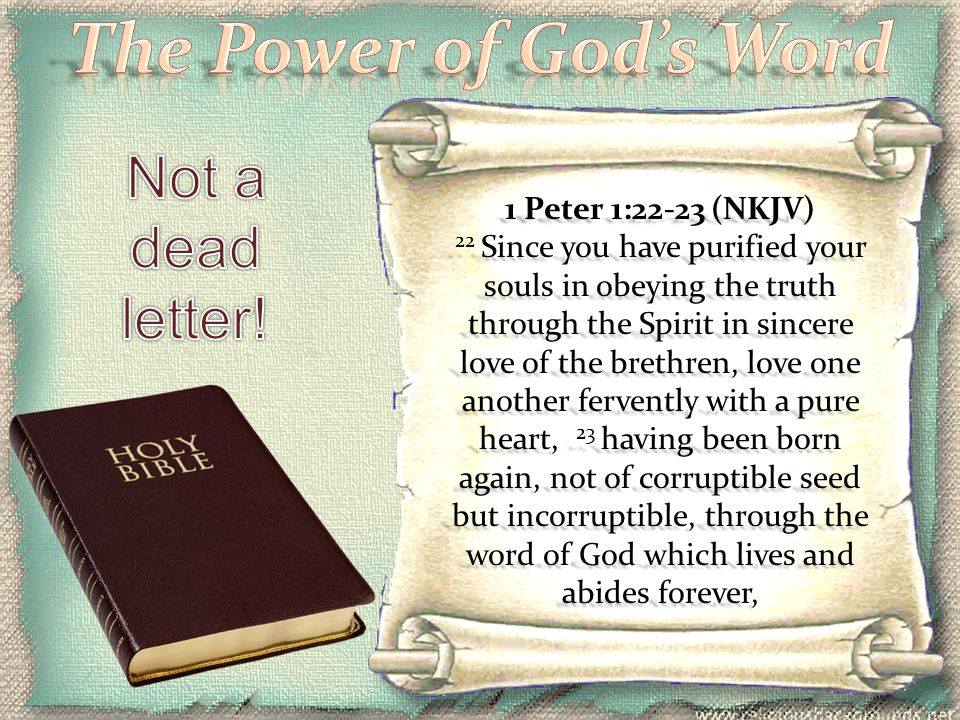 The Power of God's Word Not a dead letter!