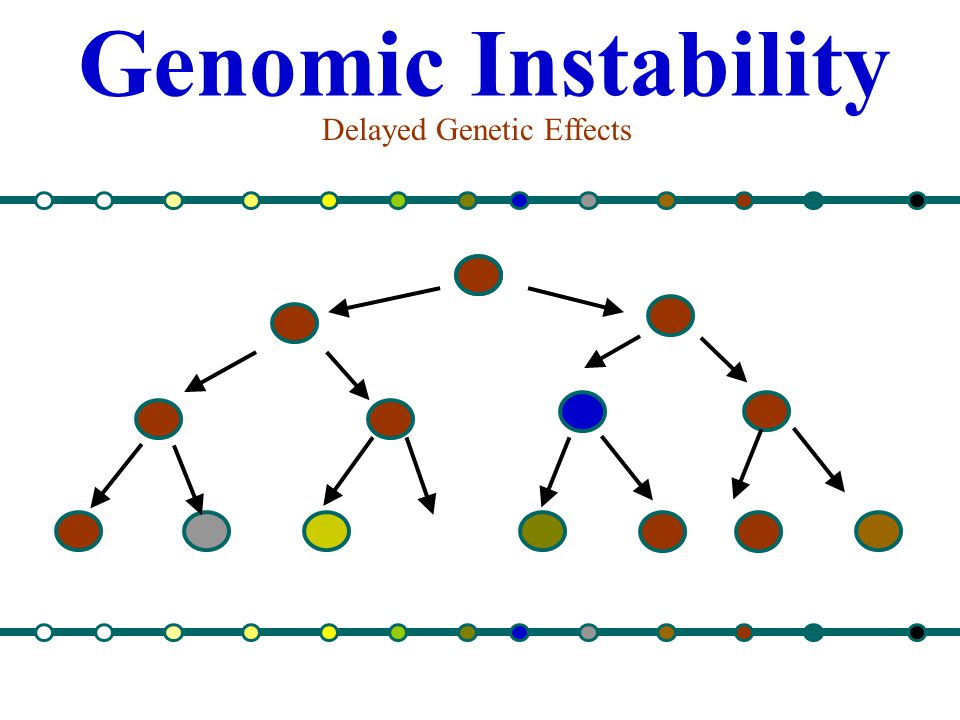 Genomic Instability Delayed Genetic Effects