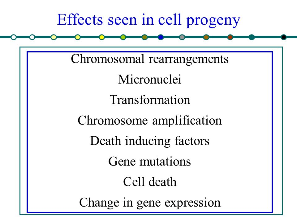 Effects seen in cell progeny