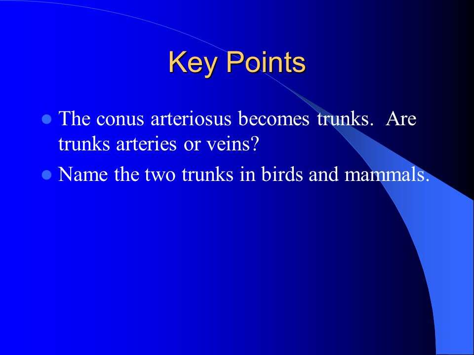 Key Points The conus arteriosus becomes trunks. Are trunks arteries or veins.