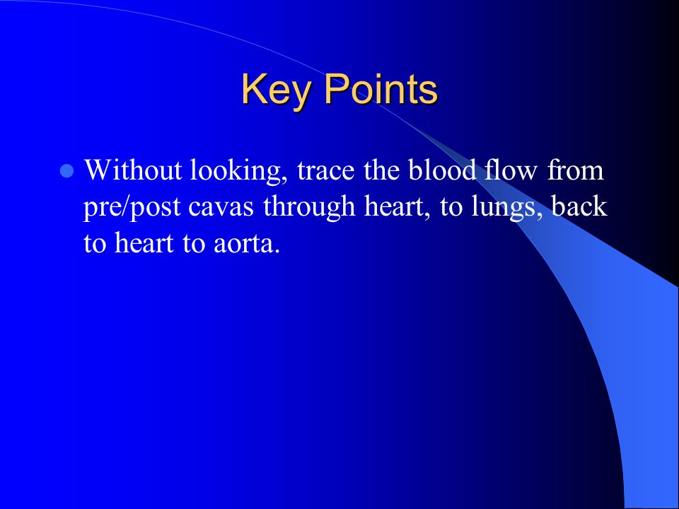 Key Points Without looking, trace the blood flow from pre/post cavas through heart, to lungs, back to heart to aorta.