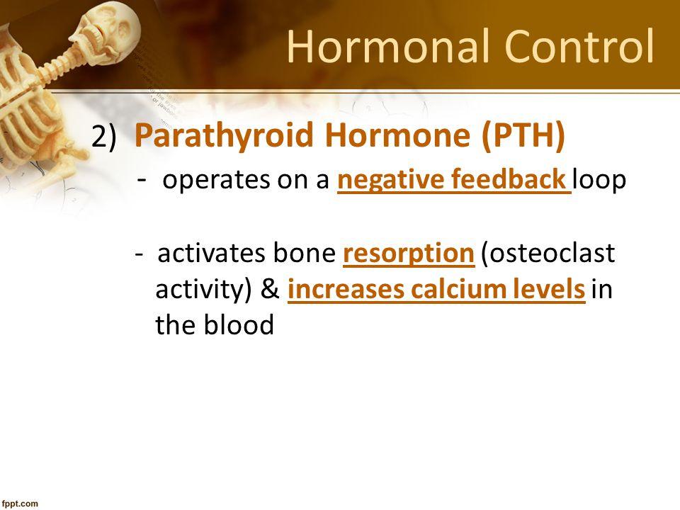 Hormonal Control 2) Parathyroid Hormone (PTH)