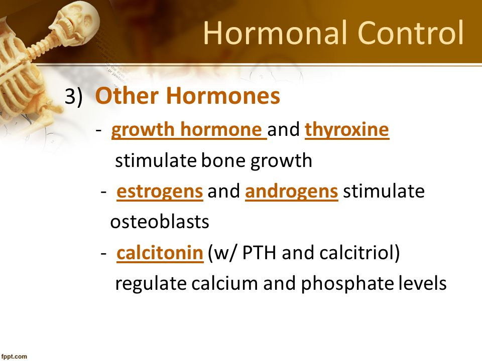 Hormonal Control 3) Other Hormones - growth hormone and thyroxine