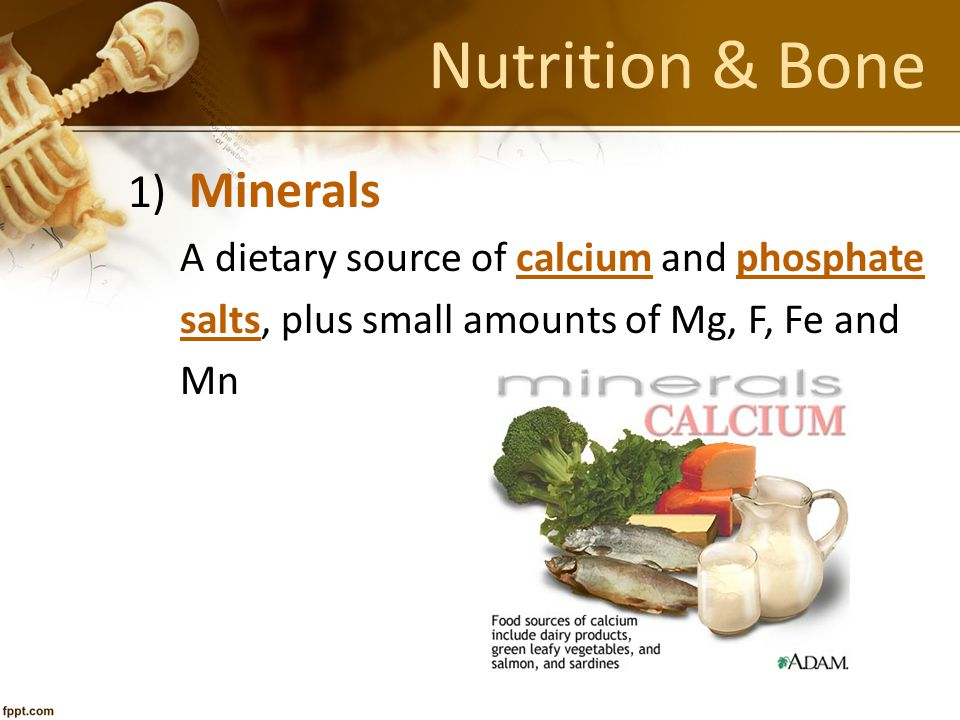 Nutrition & Bone 1) Minerals A dietary source of calcium and phosphate