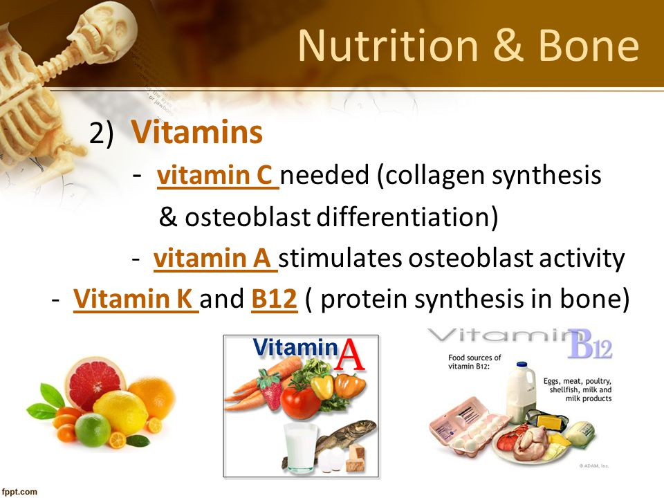 Nutrition & Bone 2) Vitamins - vitamin C needed (collagen synthesis