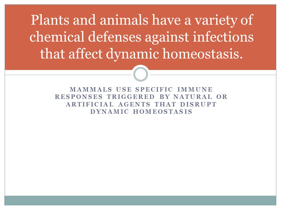 Plants and animals have a variety of chemical defenses against infections that affect dynamic homeostasis.