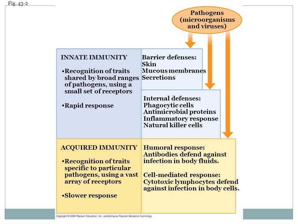Pathogens (microorganisms and viruses)
