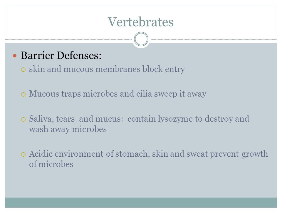 Vertebrates Barrier Defenses: skin and mucous membranes block entry