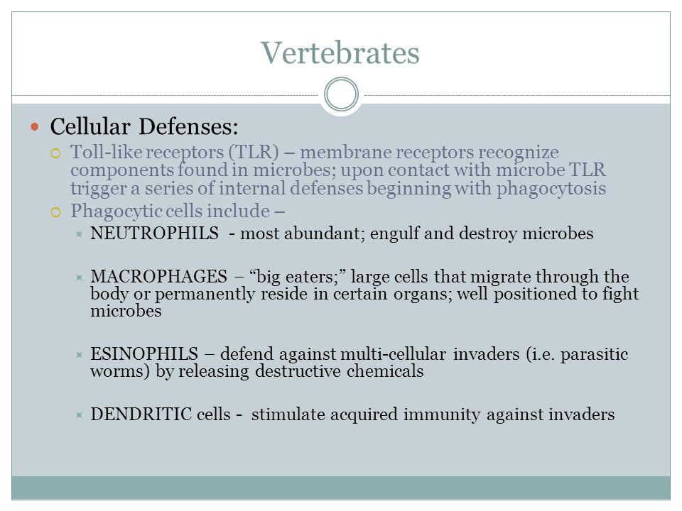 Vertebrates Cellular Defenses: