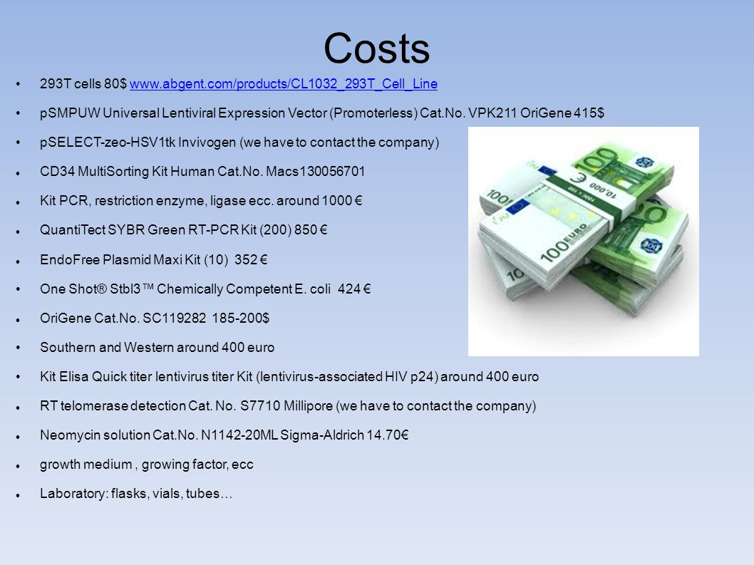 Costs 293T cells 80$ www.abgent.com/products/CL1032_293T_Cell_Line