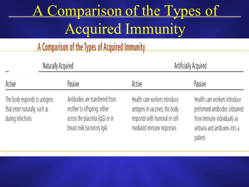 A Comparison of the Types of Acquired Immunity
