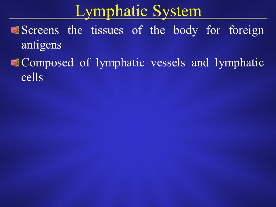 Lymphatic System Screens the tissues of the body for foreign antigens