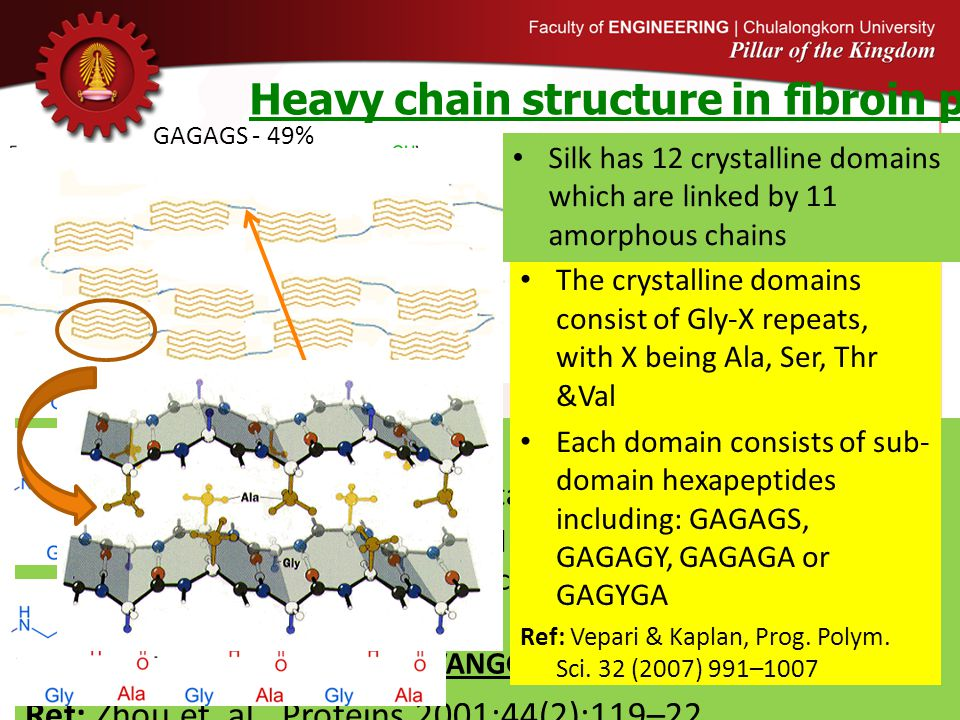 Heavy chain structure in fibroin proteins