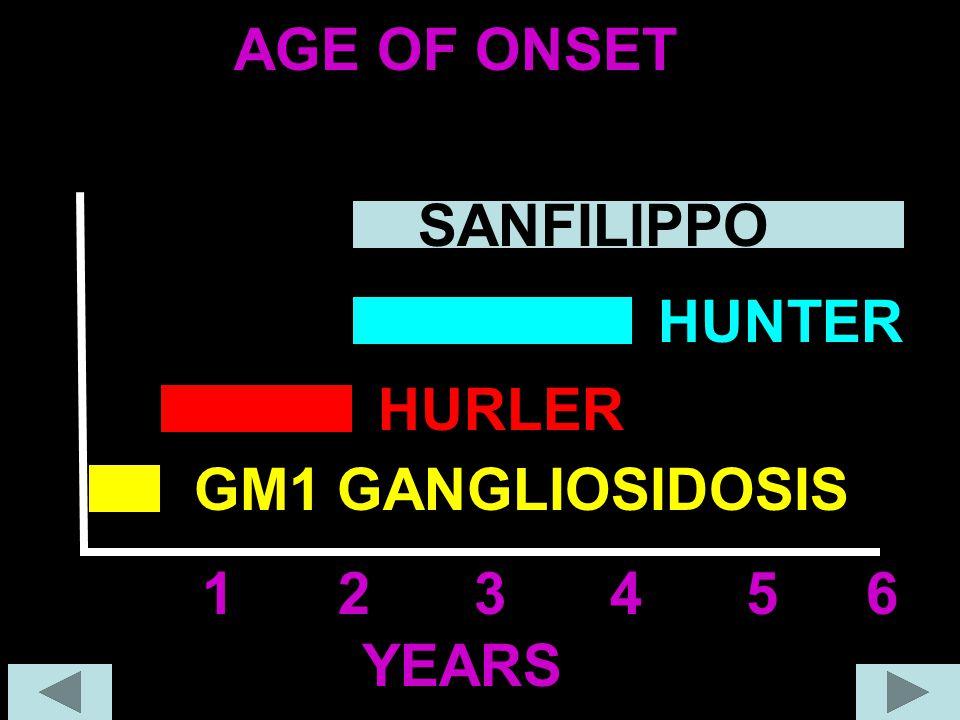 AGE OF ONSET SANFILIPPO HUNTER HURLER GM1 GANGLIOSIDOSIS 1 2 3 4 5 6 YEARS