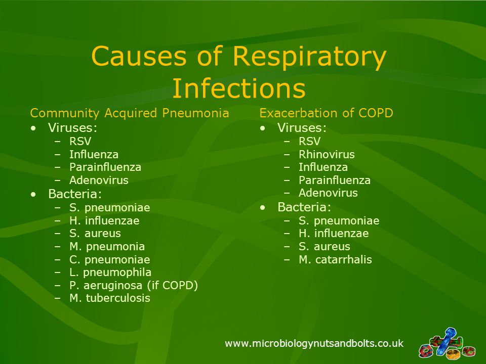 Causes of Respiratory Infections