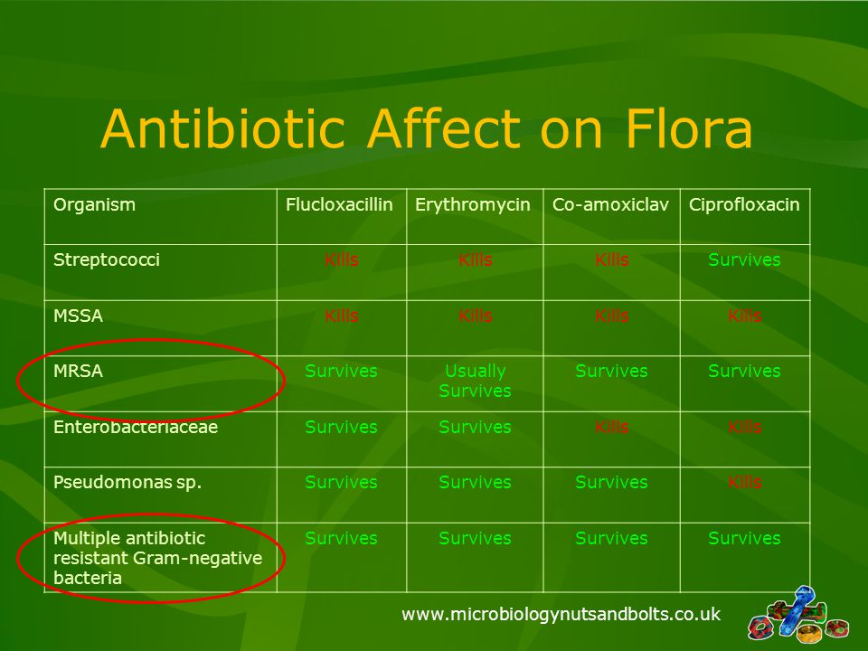 Antibiotic Affect on Flora
