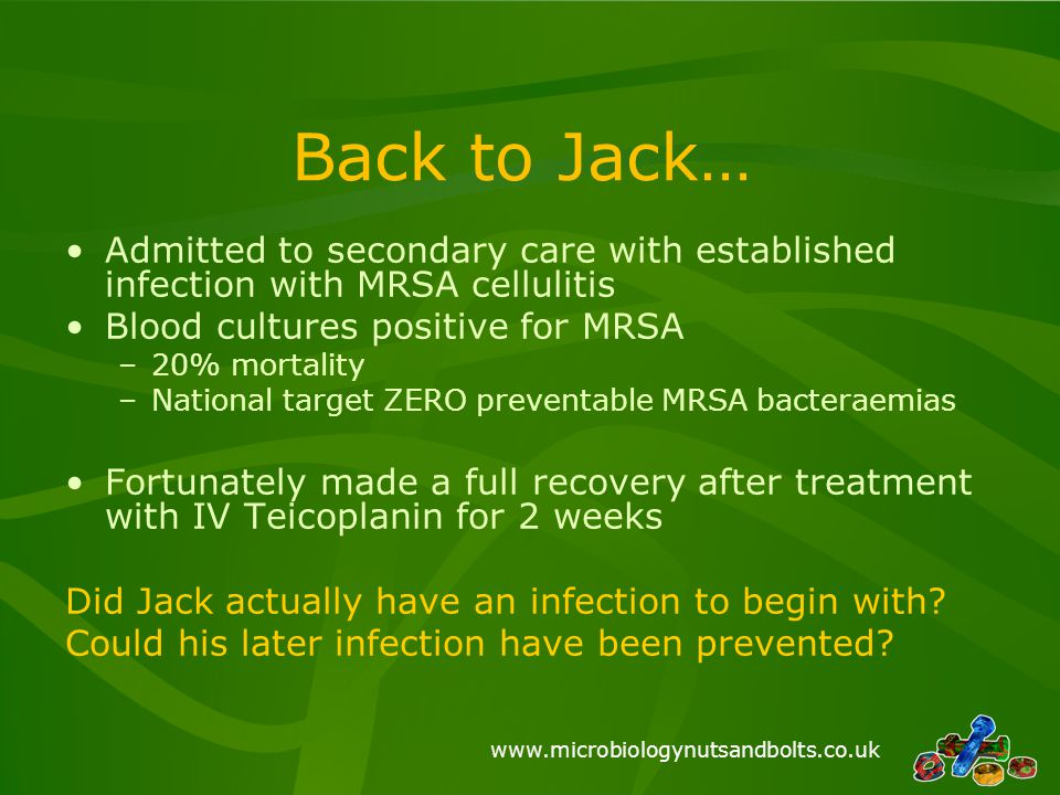 Back to Jack… Admitted to secondary care with established infection with MRSA cellulitis. Blood cultures positive for MRSA.