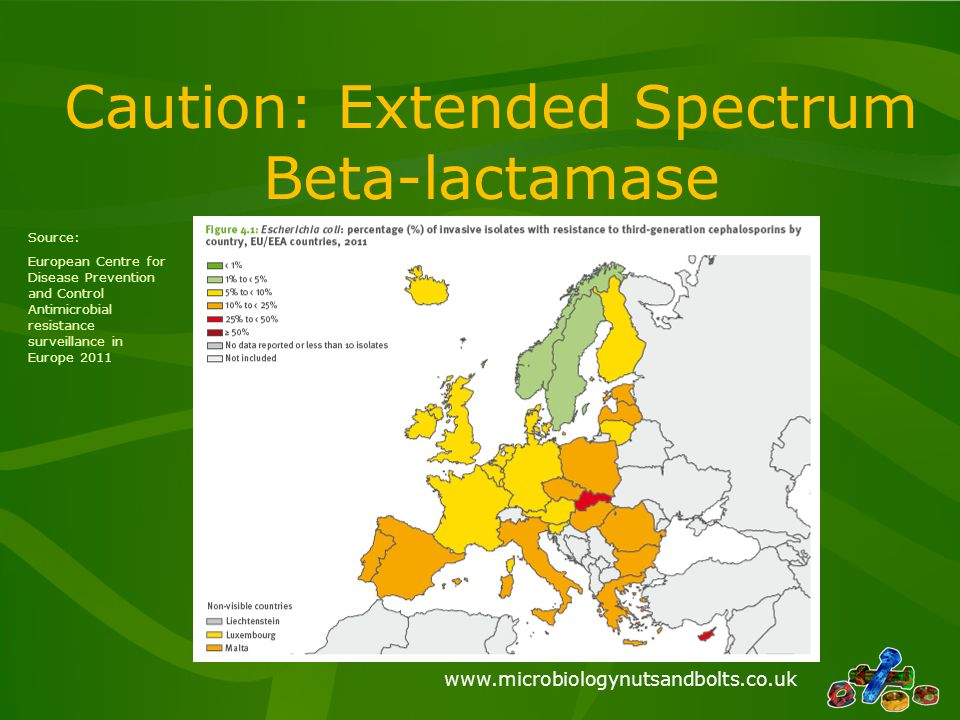 Caution: Extended Spectrum Beta-lactamase