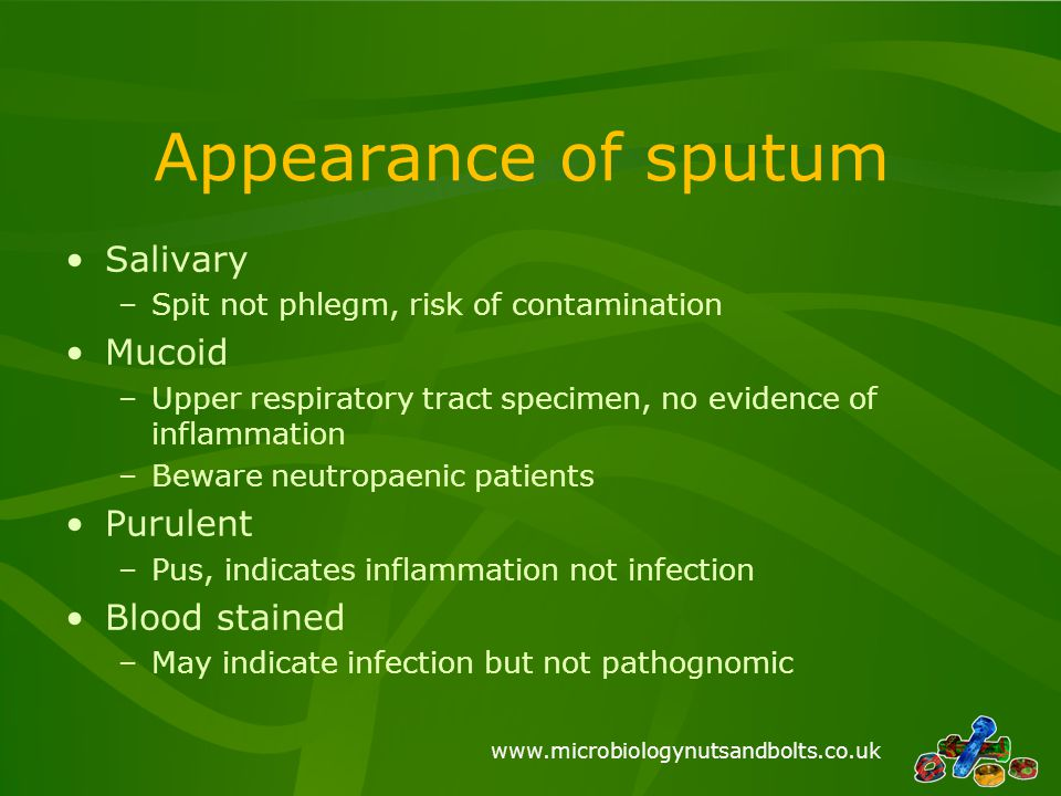 Appearance of sputum Salivary Mucoid Purulent Blood stained
