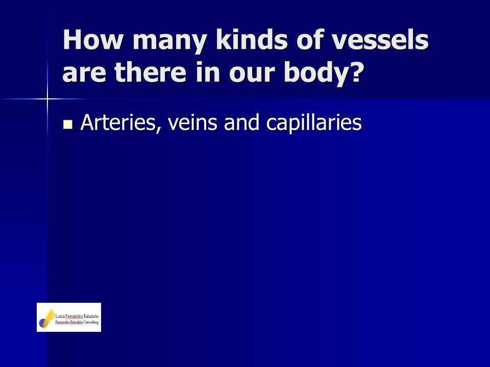 How many kinds of vessels are there in our body