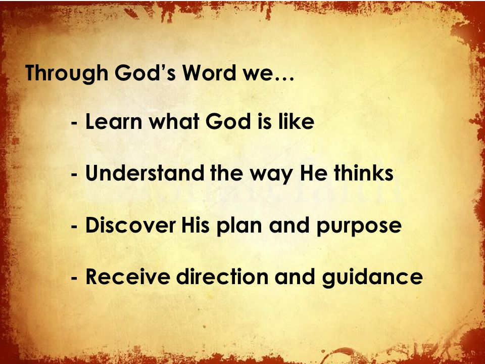 Through God's Word we… - Learn what God is like. - Understand the way He thinks. - Discover His plan and purpose.